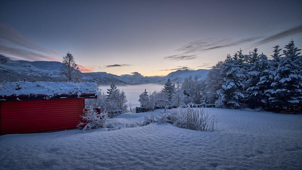 Ved hytta | Per Arne Aursnes